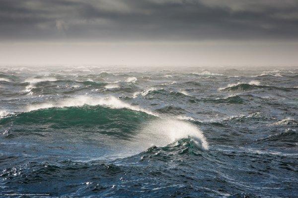 Загадочное природное явление: У побережья Охотского моря вода стала желтого цвета