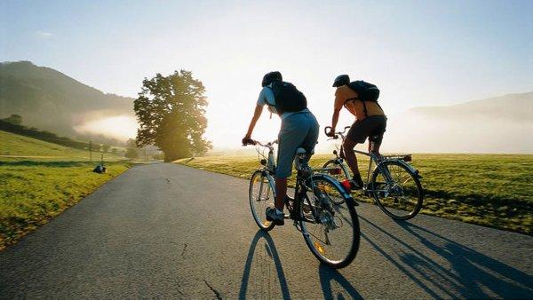 Госдума защитит велосипедистов от лишения водительских прав