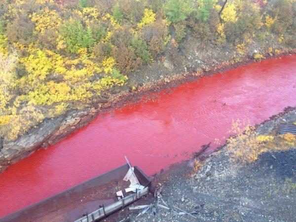 В Норильске река вновь стала «кровавой»