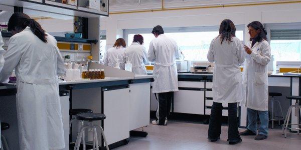 В России учёные получат общенациональную сеть биобанков