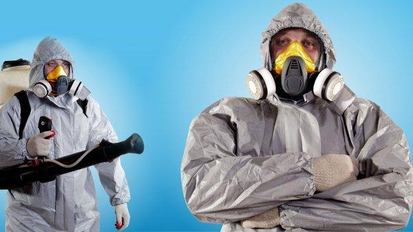 Уничтожение насекомых - ключ к покою и безопасности