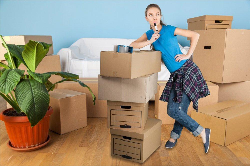 Участникам программы реновации помогут переехать в новое жилье