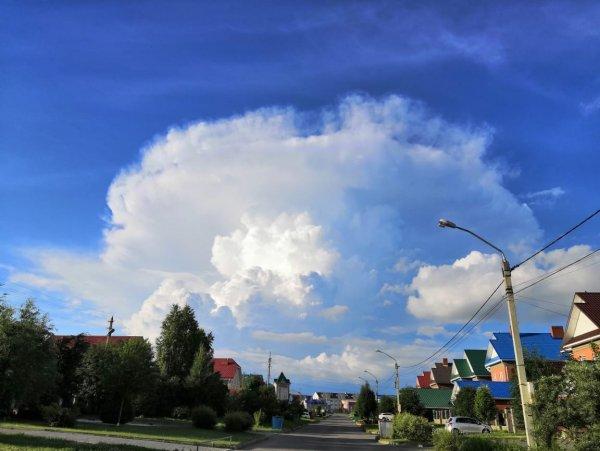 Жителей Барнаула напугал странный НЛО в небе