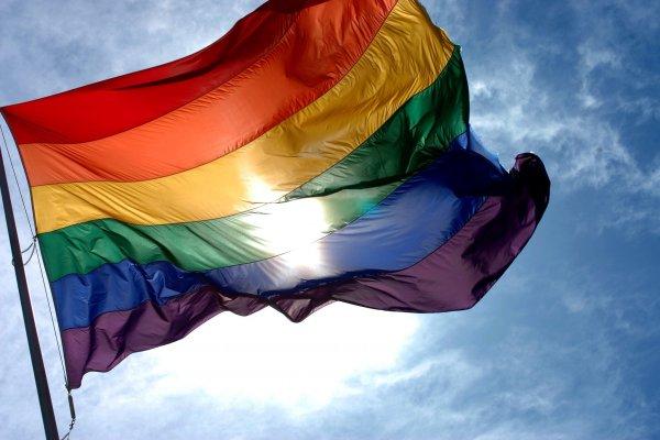 Ростовчане осудили нетрадиционную пару за радужный флаг в городе