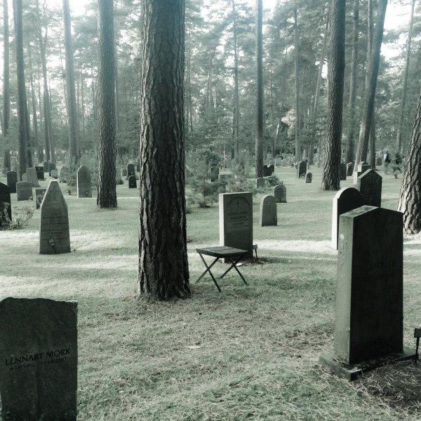Под Барнаулом обнаружили незаконную свалку из гробов и могильных плит