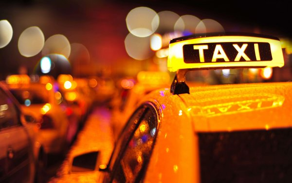 Тюменский таксист набросился с битой на прохожего и его собаку