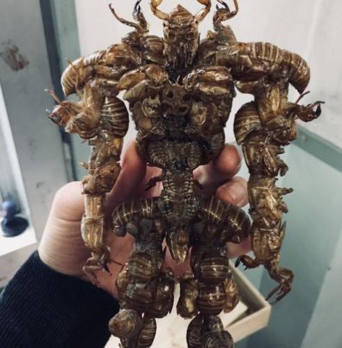 В Японии подросток собрал монстра из насекомых