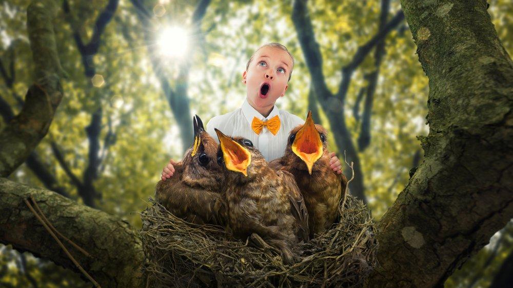 В Московском зоопарке создадут гнезда для детей, а животных наделят правами