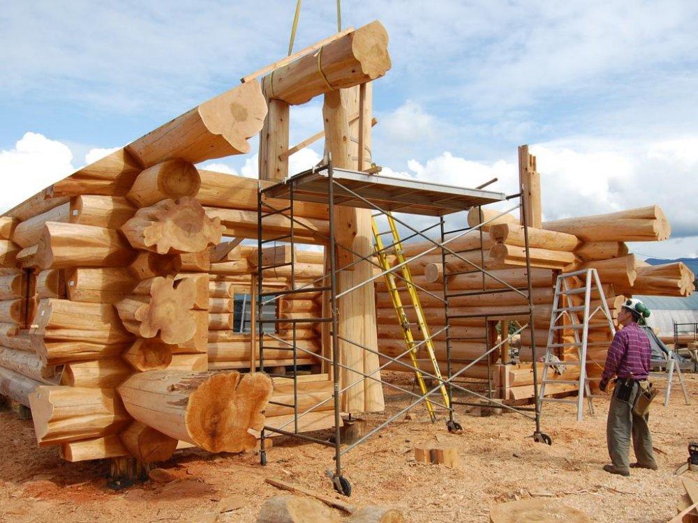 Медведев ждет предложений по развитию строительства деревянных домов