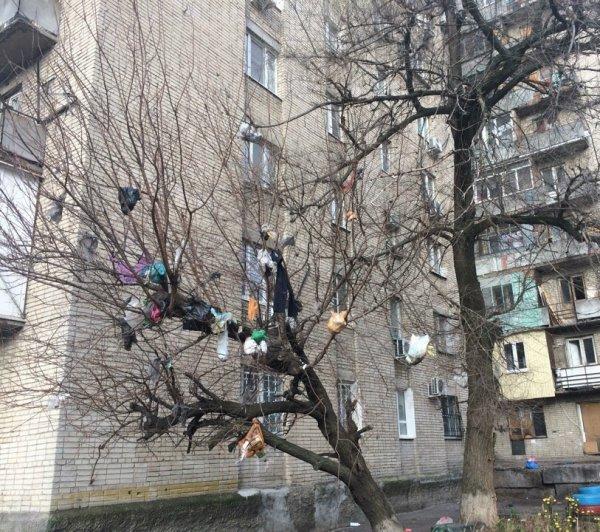 Сжечь и снести: Жители Ростова ищут способы очистить город от грязи