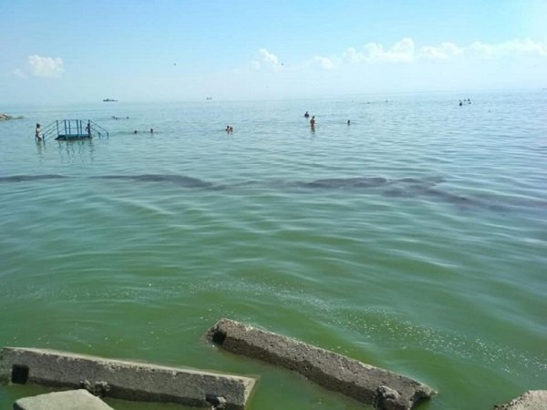 Крупное пятно мазута в заливе обеспокоило жителей Таганрога