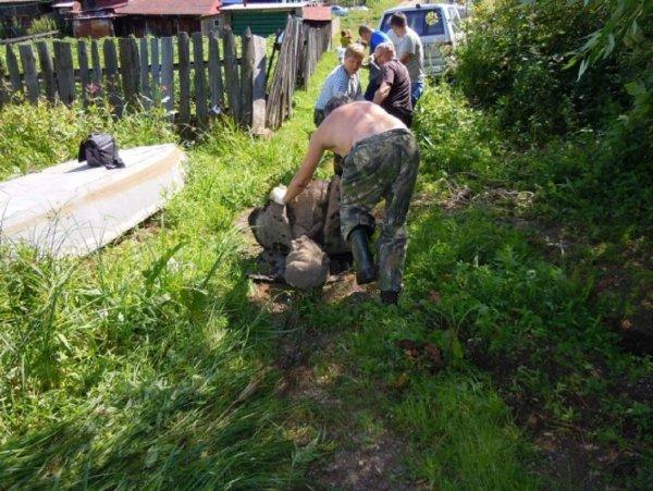 Восстал из воды как Китеж-град: На Урале нашли затопленный памятник Сталину