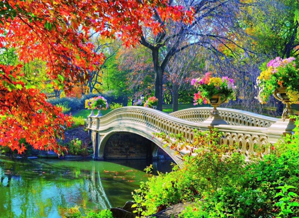 4 мостика с видом на живописный рельеф установили в парке в пойме реки Битца