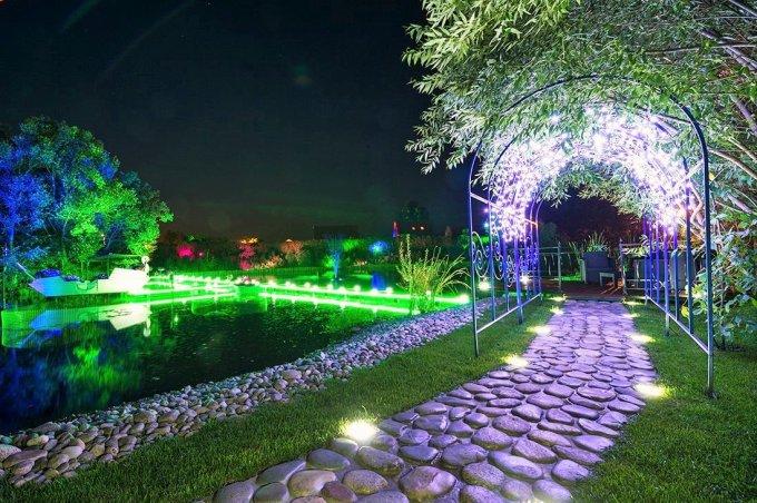 Ландшафтную подсветку с RGB-технологией испытали на «Острове мечты»